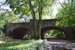 Central Park-Eaglevale Arch, 08.17.14