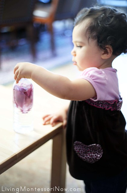 Exploring the Rose Petal Sensory Bottle