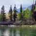 Jenny Lake and Lodge