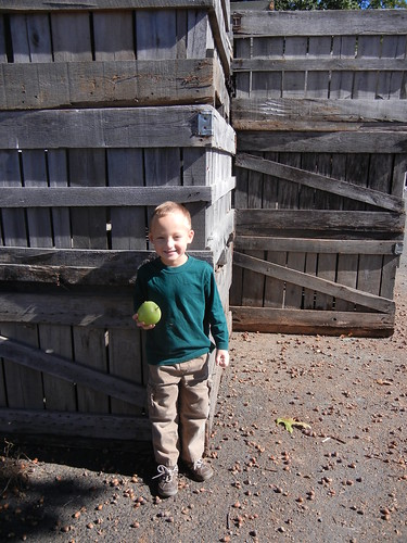Sept 23 2014 Showalter Orchard (7)