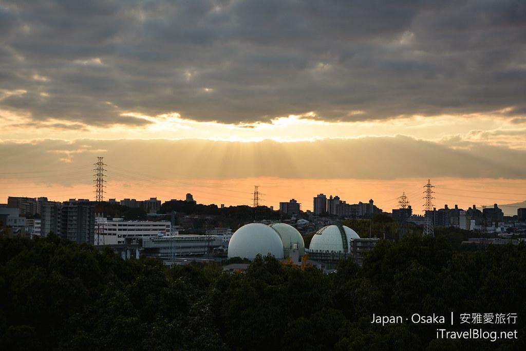 大阪赏枫 万博纪念公园 红叶庭园 33