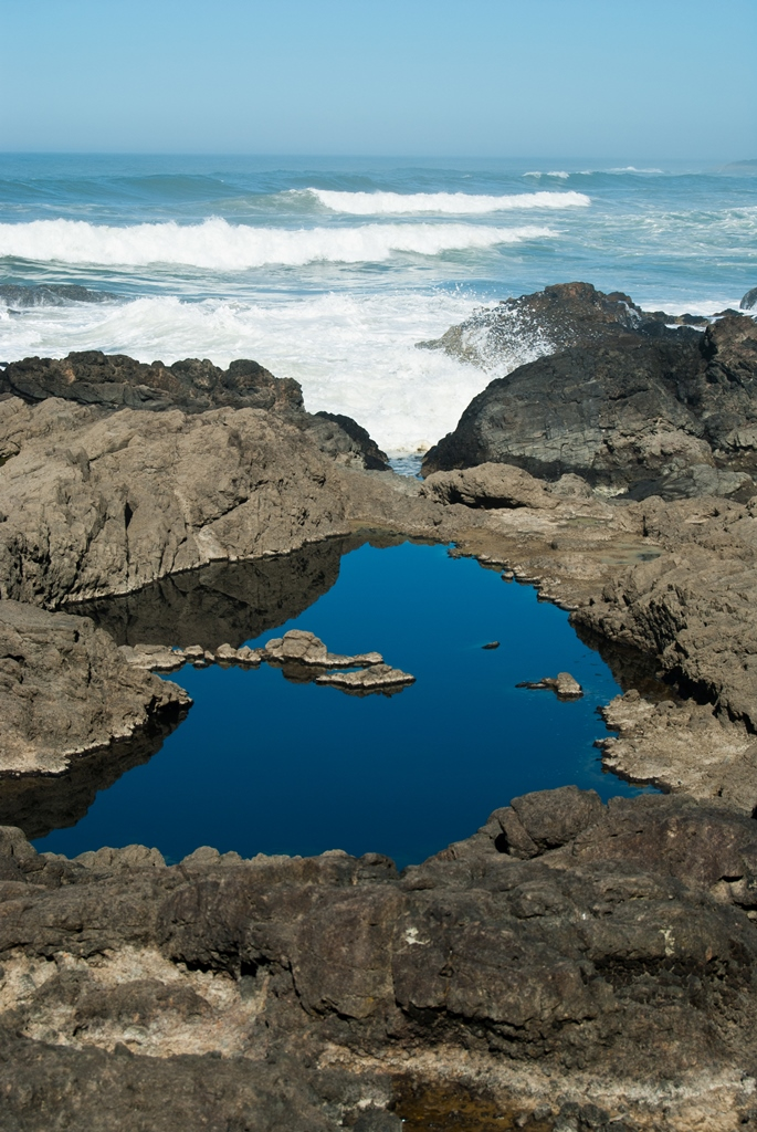 Tidal Pool Beyond the Waves