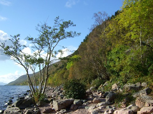 Inverness to Fort William Along Loch Ness