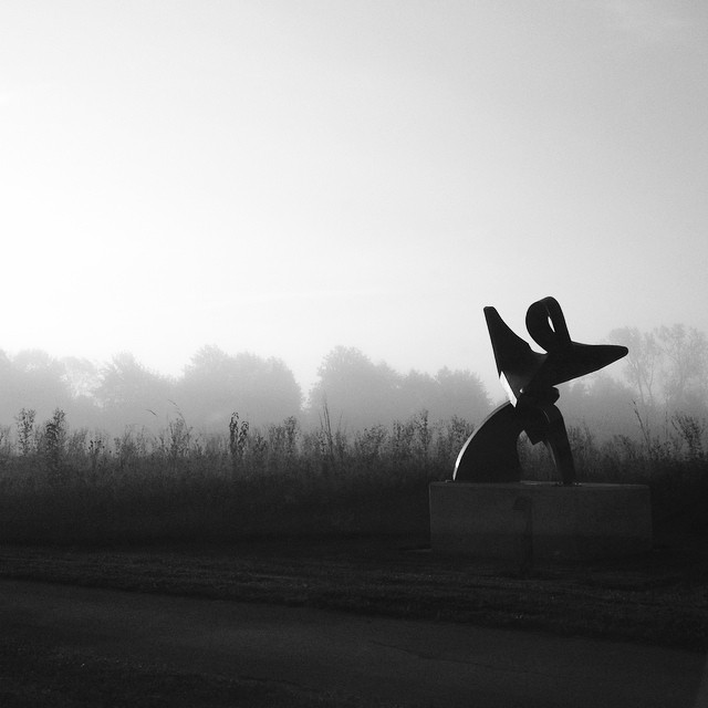 Sun Salutation #enjoyillinois #blackandwhite #fog