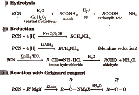 CBSE Class 12 Chemistry Notes : Amines – AglaSem Schools