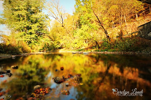 autumn trees fall nature leaves reflections river landscape rocks colorful stream seasons pennsylvania ngc seasonal scenic pa picturesque whitehall allentown lehighvalley carolynlandi
