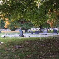 Maple Park Cemetery -- Springfield