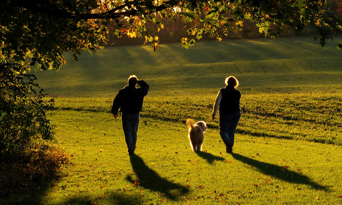 park lighting autumn trees sunset people lebanon dog fall leaves walking shadows state pennsylvania parks pa pennsylvaniastateparks unioncanaltunnelpark