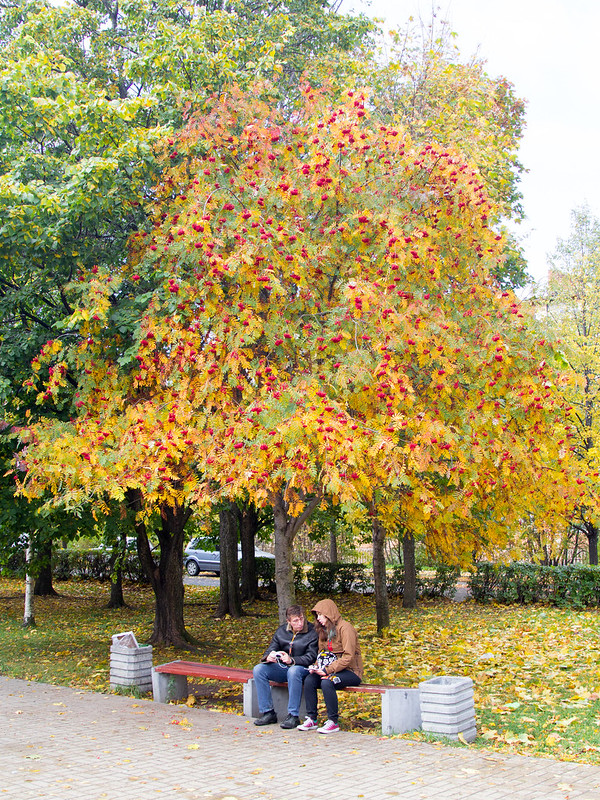 2014-09-27-12-59-45-Петрозаводск-062