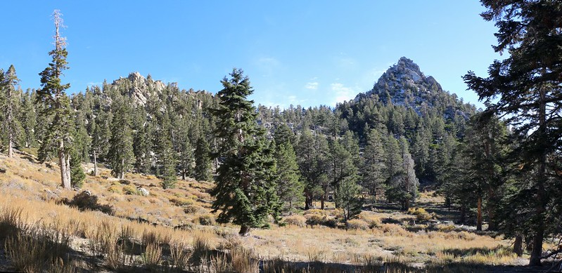 Looking across Tamarack Meadow toward Cornell Peak