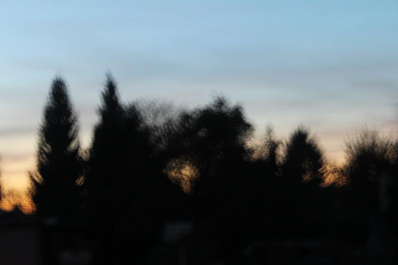 IMG_9947