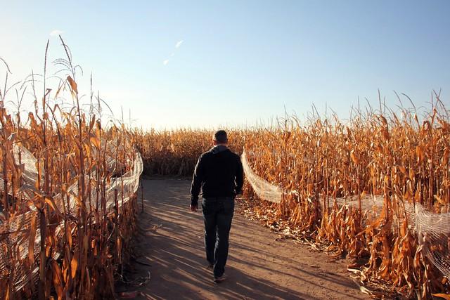 Fritzler Corn Maze, Colorado