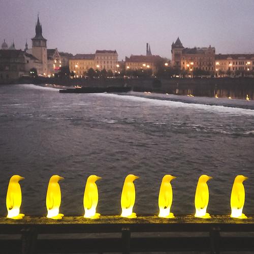 Penguins at night - Prague's Museum Kampa right on the Vltava River.
