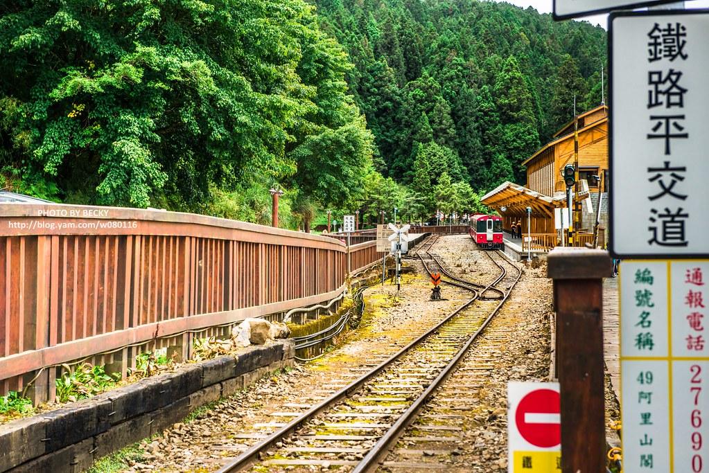 2014.Alishan National Scenic Area 阿里山風景區
