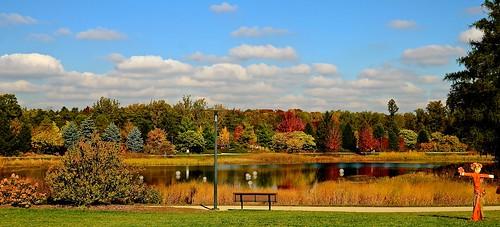 park autumn fallleaves lake fall clouds garden bench illinois pond nikon october dupage arboretum il morton meadowlake 2014 mortonarboretum dupagecounty nikon2485 nikond7000