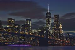 Bright Lights and City Nights