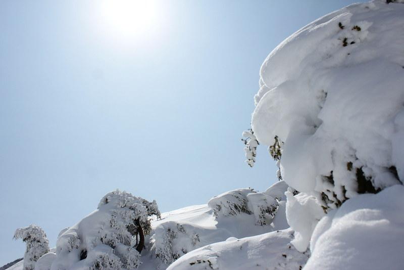 2014-03-09_00033_北横岳