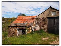 2014-05-30_Chasseradès-Bleymard-0002