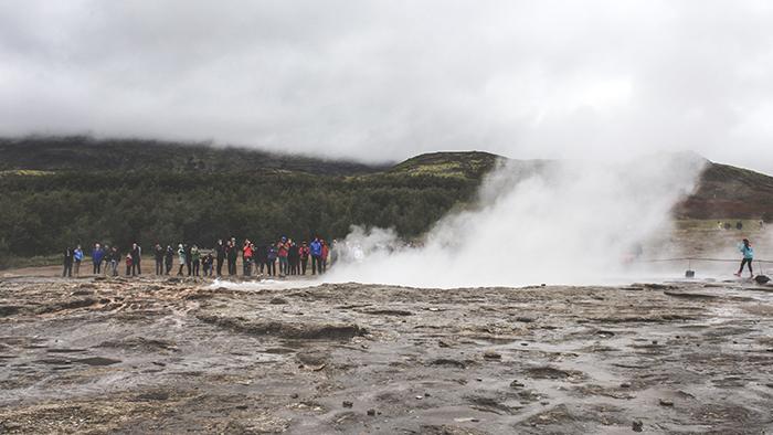 Iceland_Spiegeleule_August2014 076