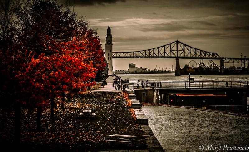 Fall in Mtl