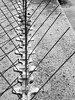 Wire Details