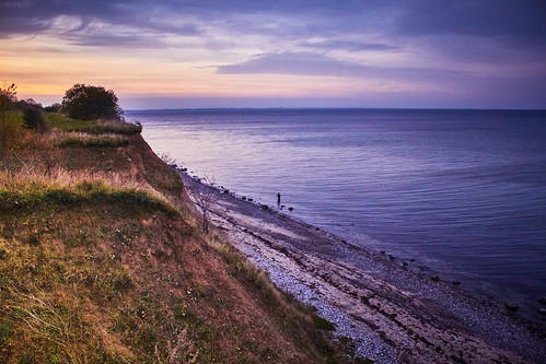 Purple Coast Sunset