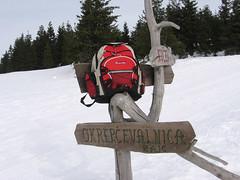 Kope zima 2006