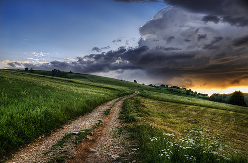 road flowers sunset sky storm nature grass clouds landscape countryside path serbia hills fields rajac