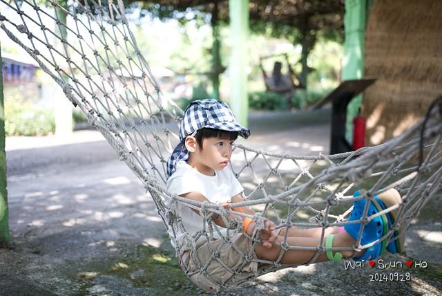 Swinging net bed