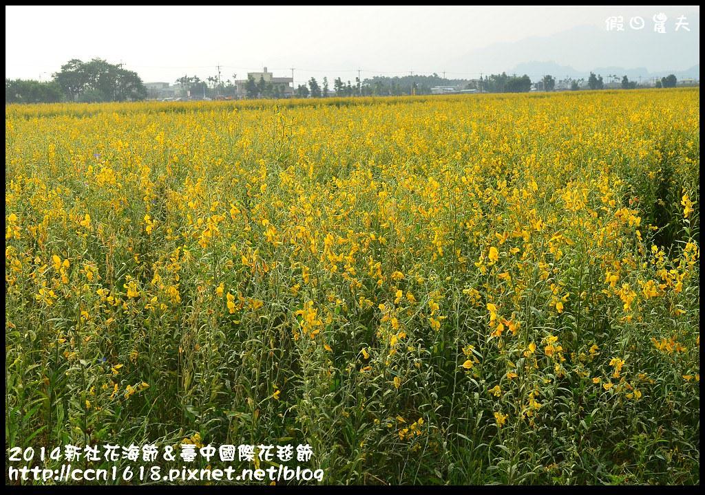 2014新社花海節&臺中國際花毯節DSC_4898