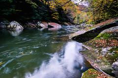 Slippery Rock Creek 2