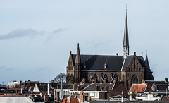 St Willibrord's boven de Daken