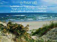 1 Peter 1:8 nlt