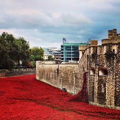 Saw the poppies at the Tower of London. Amazing.