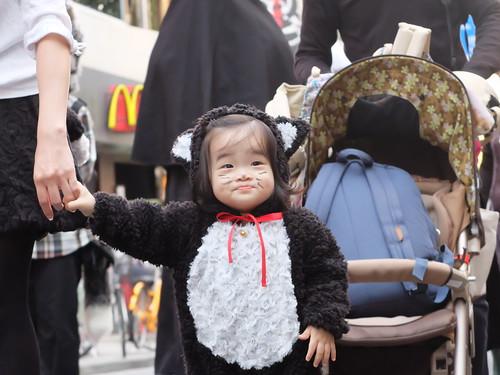 Kagurazaka Bakeneko Parade 2014-11