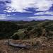Overlooking Sonora