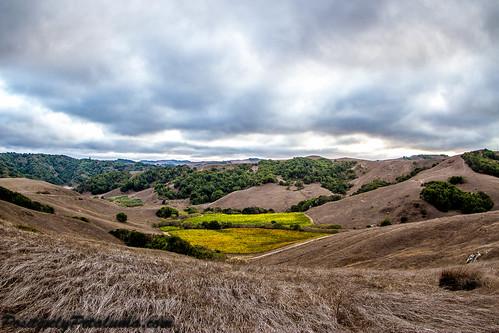 fisheye hills petaluma wilsonroad