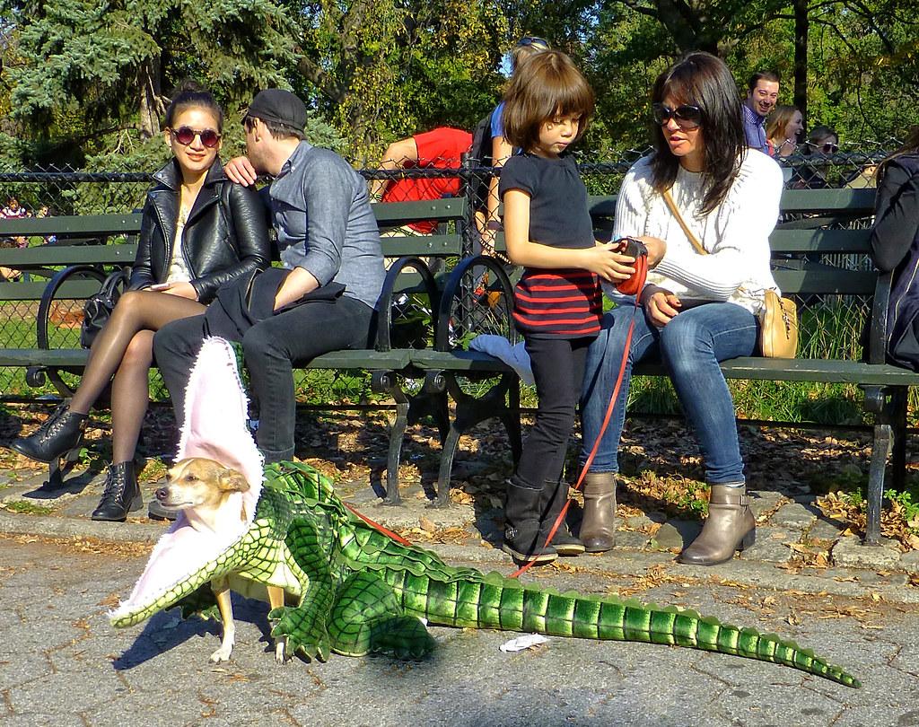 2014 Halloween Dog Parade