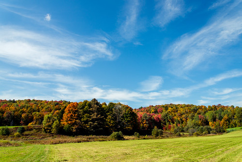 autumn sky fall nature field clouds landscape maple nikon vermont farm foliage calais vt cirrus corners btv d610 2485vr