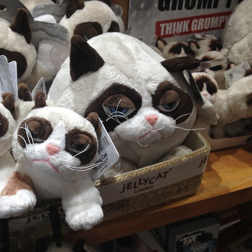 Grumpy cat! All this and more at Mrs. Tiggy Winkle's.