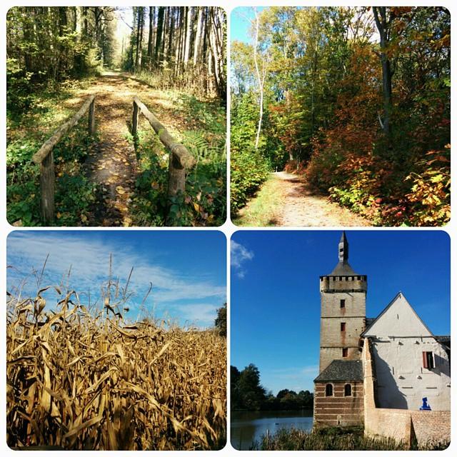 Herfstwandeling part 2. We deden 17,7 km met start aan kasteel van Horst en als hoogtepunt het prachtige Walenbos.