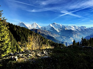 Alpenpanorama #swiss #alps #switzerland #swissness #iphone6plus #schynigeplatte #bestweather #blue #sky