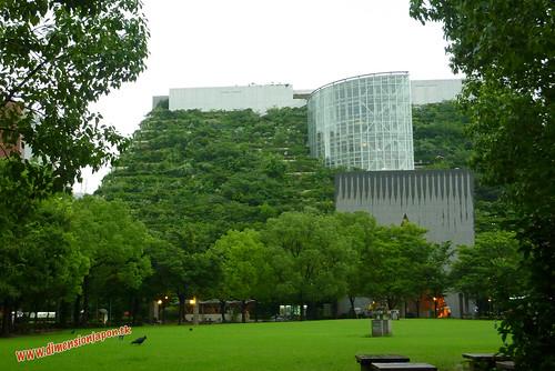 P1060476 Edificio arbol, con cuervos vaca  (Fukuoka) 12-07-2010 copia