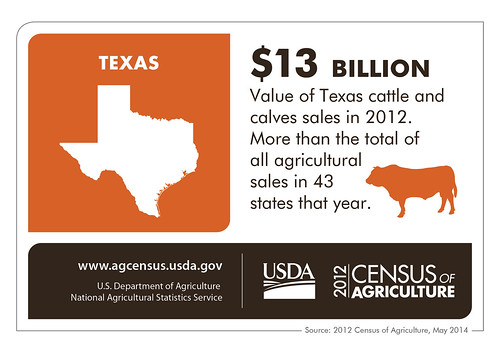 It's no bull, and no fairy-tail (tale) – Texas cattle production alone is worth more than the total agricultural production of all but 6 states.  Check back next Thursday for more details on another state from the 2012 Census of Agriculture.