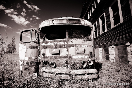 old trees sky bw abandoned monochrome grass decay rusty vehicles northdakota ghosttown schoolbus automobiles decayed beaters clunkers ruralexploration hamberg rurex trixgrain