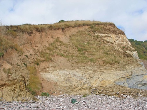 Mansands cliffs with Ivy Bee nests
