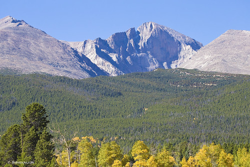 Wood Mountain Elevation : Elevation of deer ridge allenspark co usa topographic
