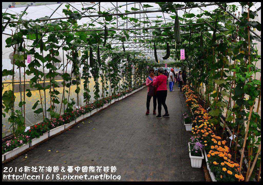 2014新社花海節&臺中國際花毯節DSC_4965