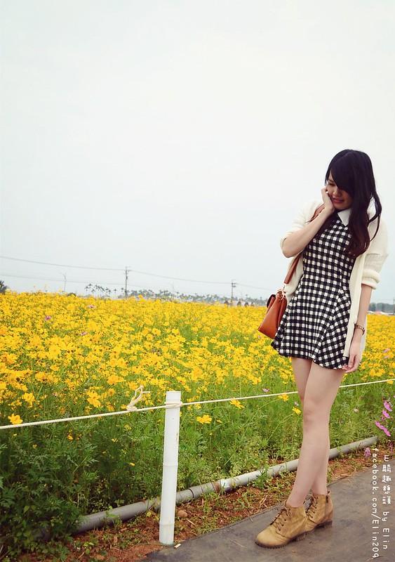 花 (36)