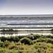 Ibiza - atardecer en los estanques de las salinas